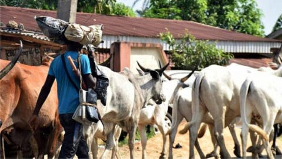 Photo of Fulani Demands 4% Of Bauchi Land To End Clashes