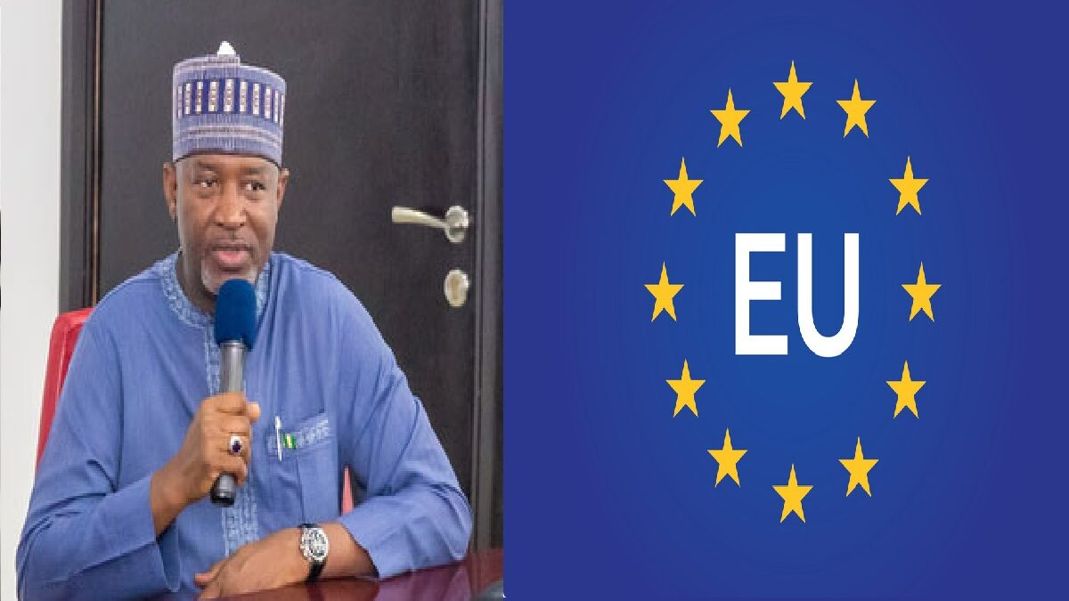 FG is planning a retaliatory travel bans on EU Countries