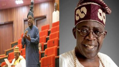 Why I will support the presidential bid of Tinubu - Senator Abdulfatai Buhari