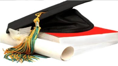 Is the spread of universities a blessing for Nigeria?