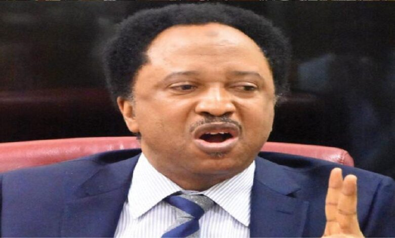 Shehu Sani, former Kaduna Central Senator, has mocked President Muhammadu Buhari over his remarks that only God can protect Nigeria's borders.