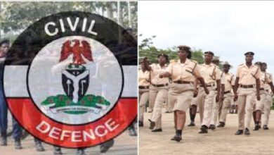 Immigration Service, Civil Defence recruitments: FG gives Fresh update, issues directives to candidates