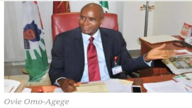 Nigeria National Assembly Can't Deliver New Constitution - Omo-Agege