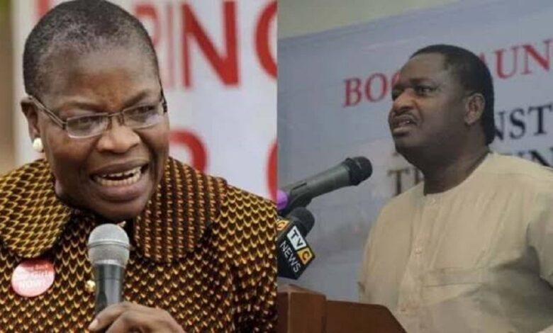 Femi Adesina, has become infamous for making controversial statements, described former education Minister and BringBackOurGirls co-founder Oby Ezekwesili