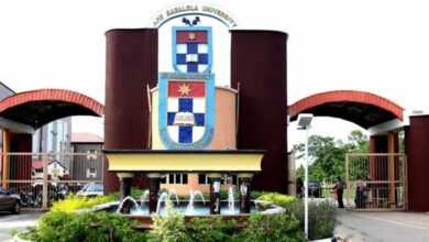 JUST IN: Afe Babalola University records scientific breakthrough on COVID-19