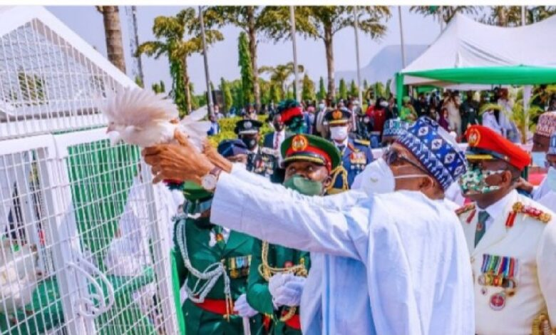 Why Buhari's pigeons refused to fly – FG reacts