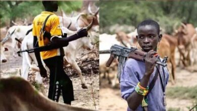 Quit Notice: Remove Fulani from forests and face war