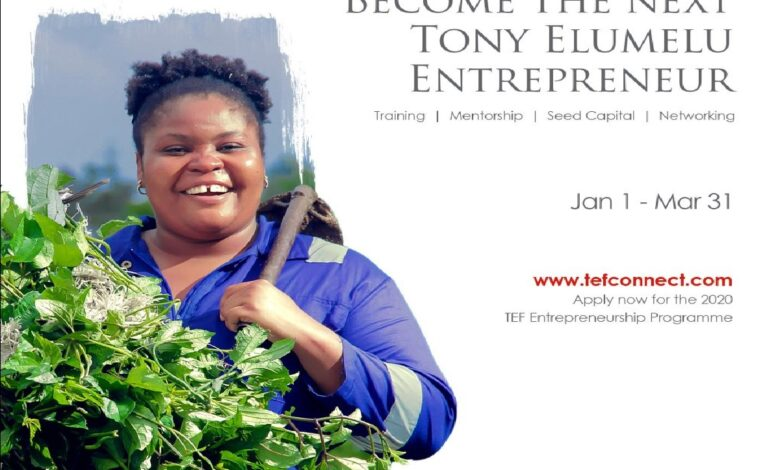 APPLY: Tony Elumelu Foundation opens entry for TEF entrepreneurship programme