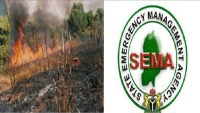 Fire ravages 200 hectares of cocoa, kolanut plantations in Ekiti