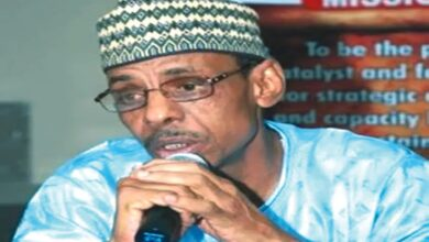 If Another Northern Is Elected President, Heaven Won't Fall- Hakeem Baba-Ahmed