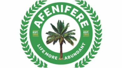 Afenifere Reacts As Court Stops FG From Arresting Igboho
