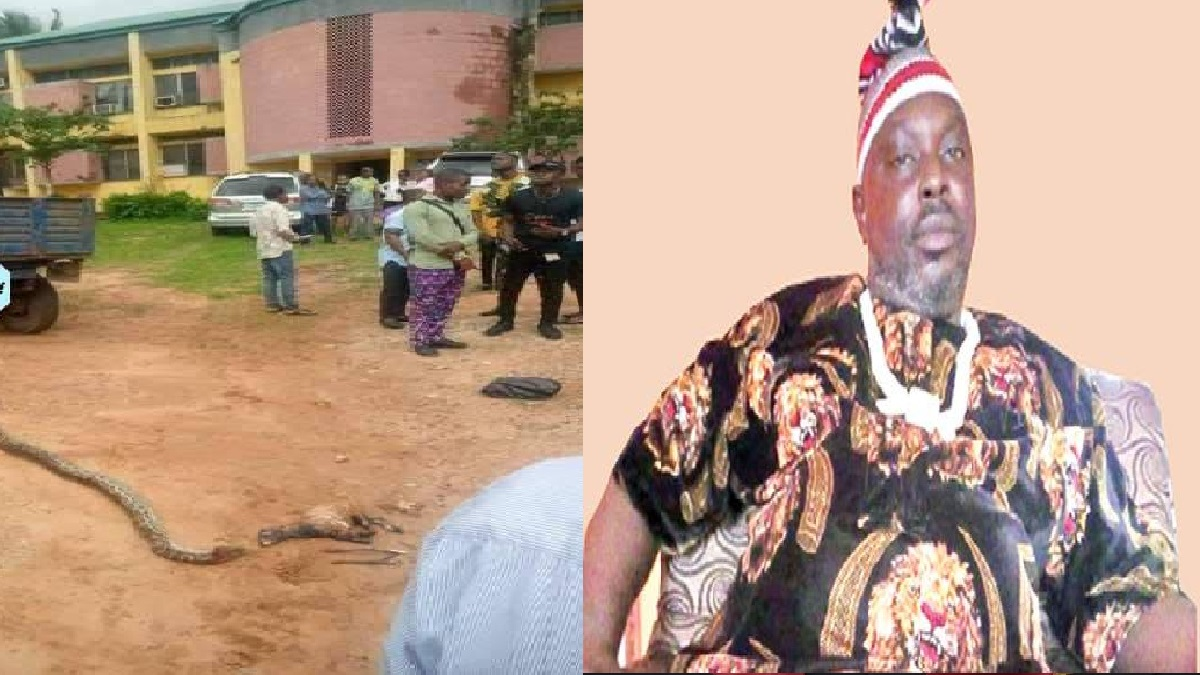 70-Year-Old Sacred Python Killed By A Student– Chief Priest Speaks in Anger