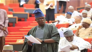Senator Teslim Folarin Reveals The Cause and Solution To The Problem Of Insecurity In Nigeria